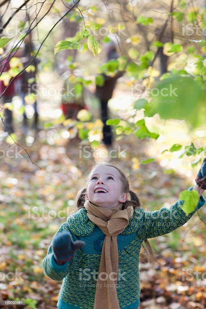 Girl pulling on tree branch in autumn royalty-free stock photo