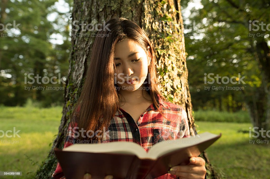 Girl reading a book at afternoon. stock photo