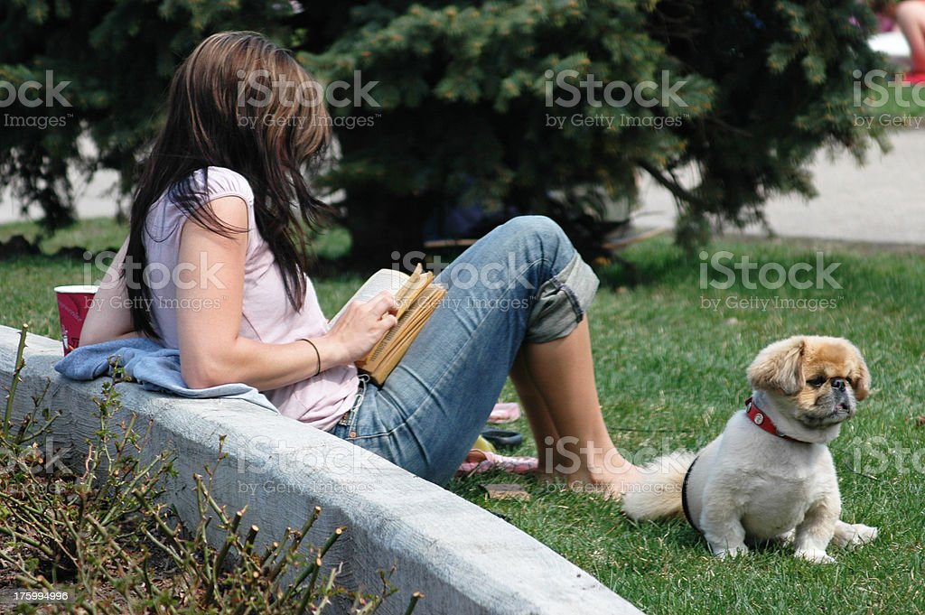 Girl Reading in Park royalty-free stock photo