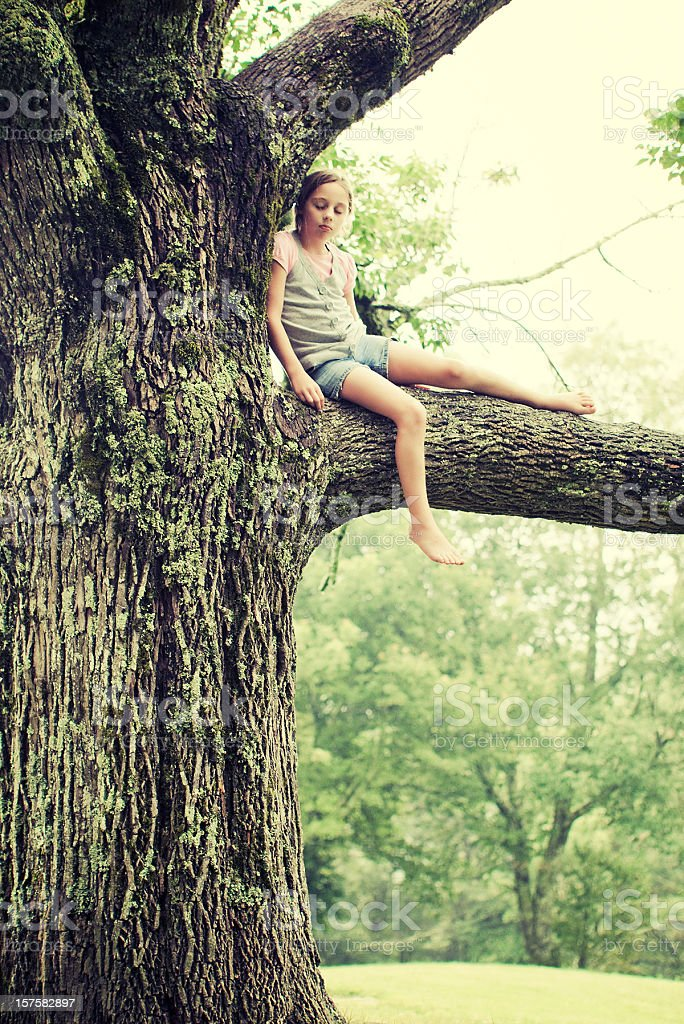 girl resting on a tree stock photo