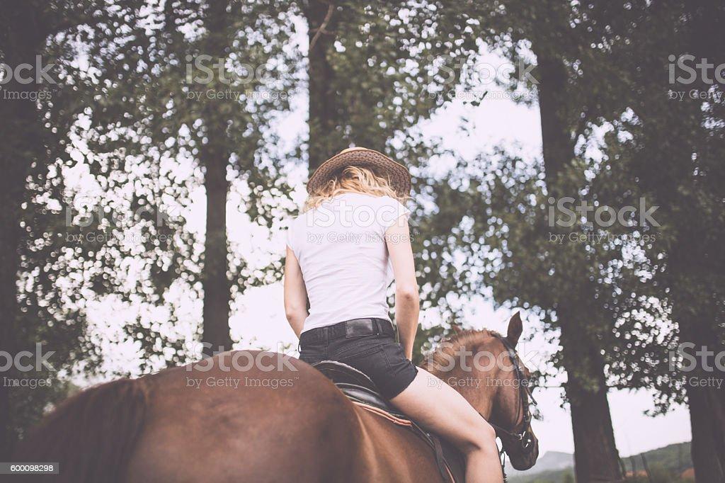 Girl ridding a horse stock photo