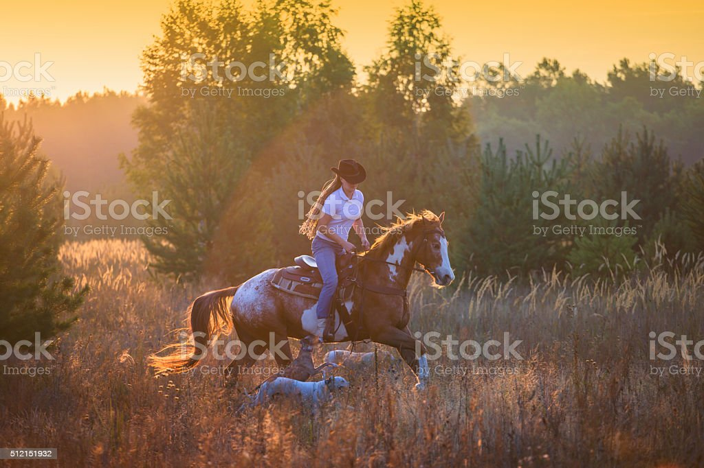 Girl riding on the red-and-white Appaloosa horse stock photo