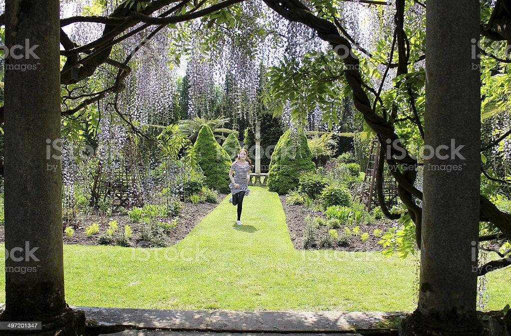 Girl running on garden lawn towards pergola of wisteria flowers stock photo