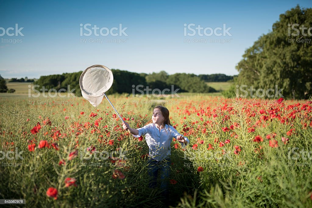 Girl Running Through a Poppy Field Trying To Catch Insects stock photo