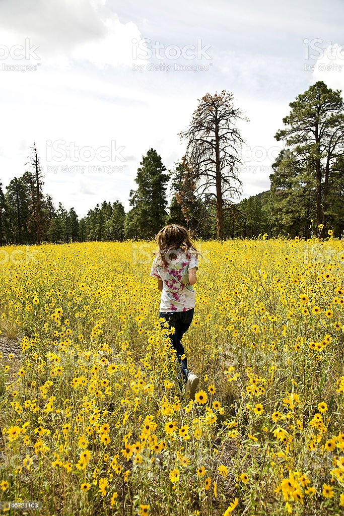 Girl Running Through Sunflowers stock photo