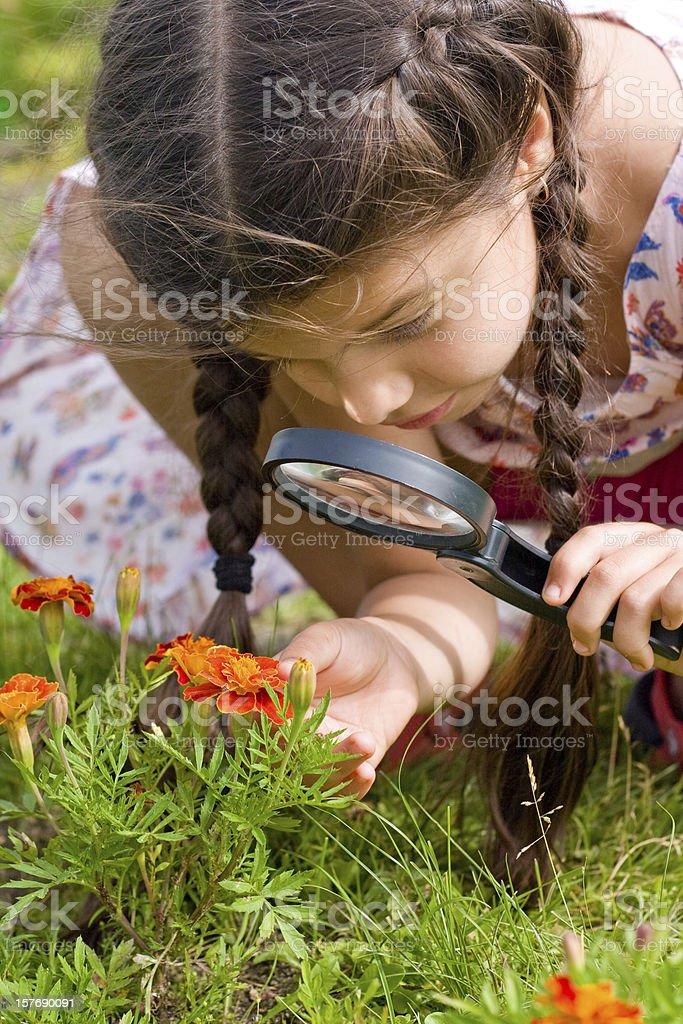 Девочка смотрит через Увеличительное стекло цветы Стоковые фото Стоковая фотография