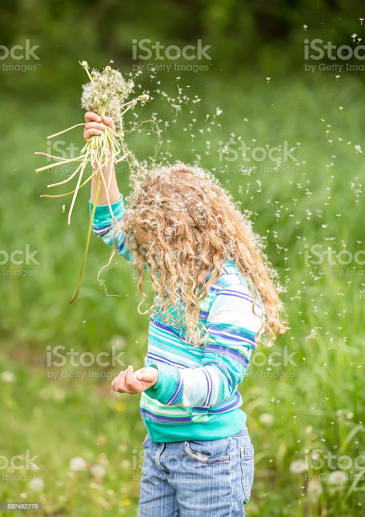 Girl Shaking Dandelion Seeds Into Her Hair stock photo