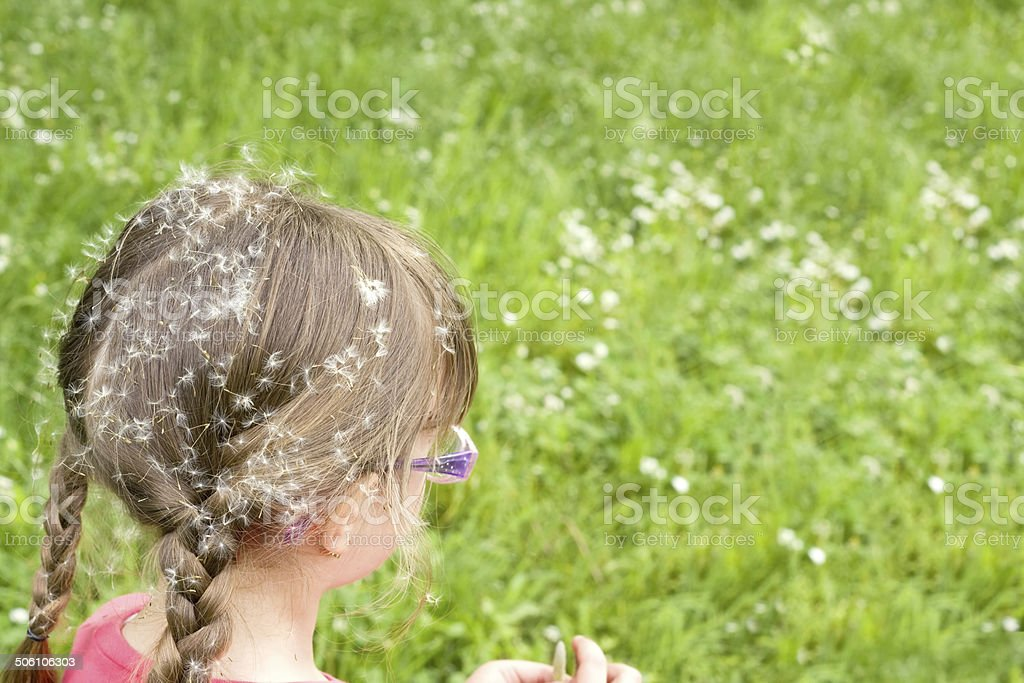 girl sitting in the grass and blowing dandelion stock photo