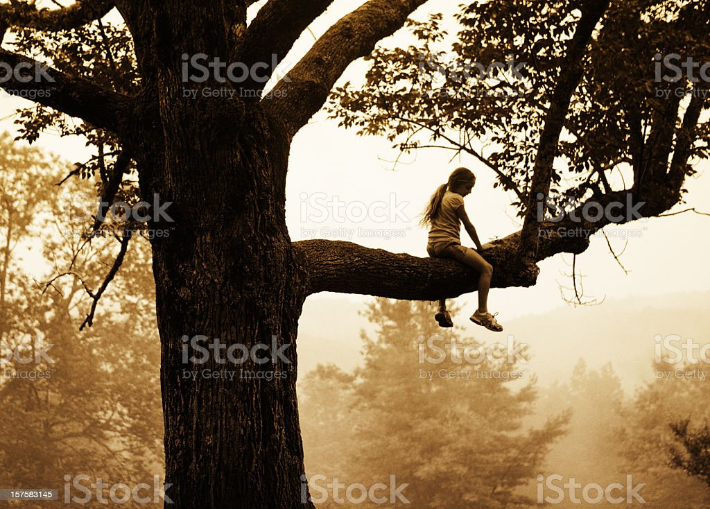 girl sitting on a branch stock photo