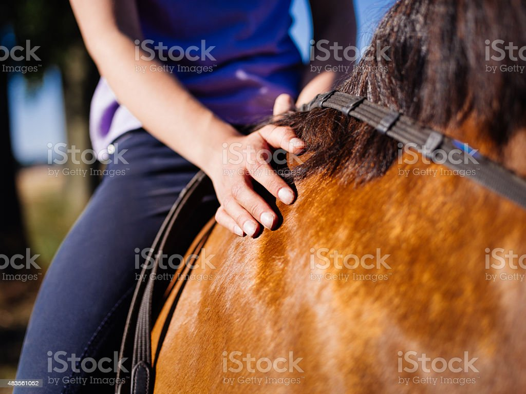 Girl sitting on a glossy horse touching it's side stock photo
