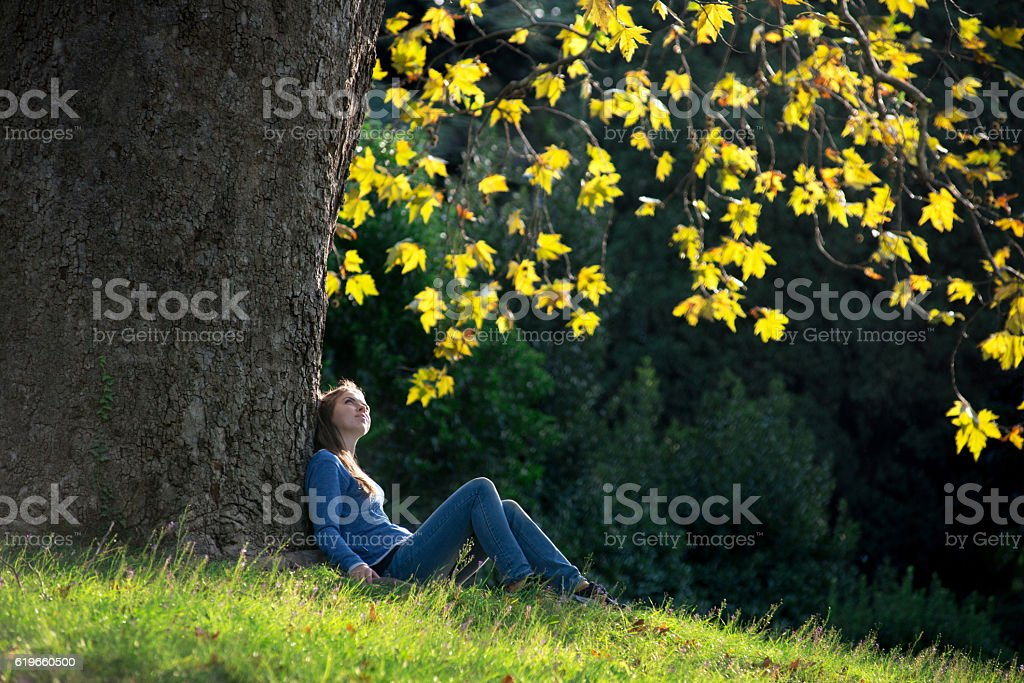 Girl sitting on the grass under maple tree in autumn stock photo