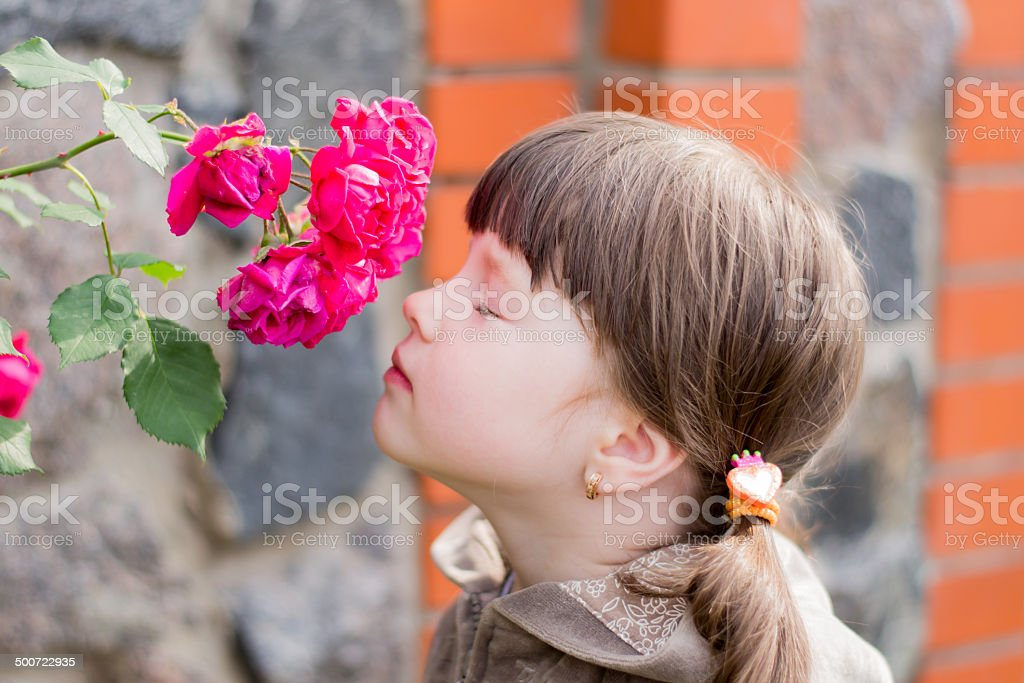 girl smelling a flower stock photo