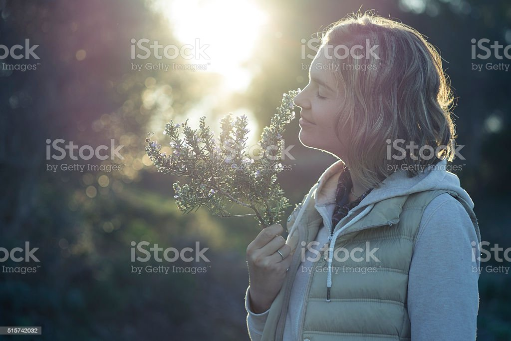 Girl smelling the fragrance of a rosemary twig at sunset stock photo