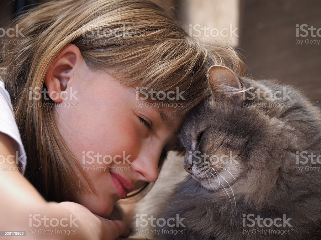 Girl smiling cat stock photo