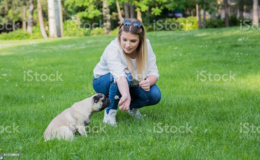 Girl spending quality time with her pug in the park stock photo