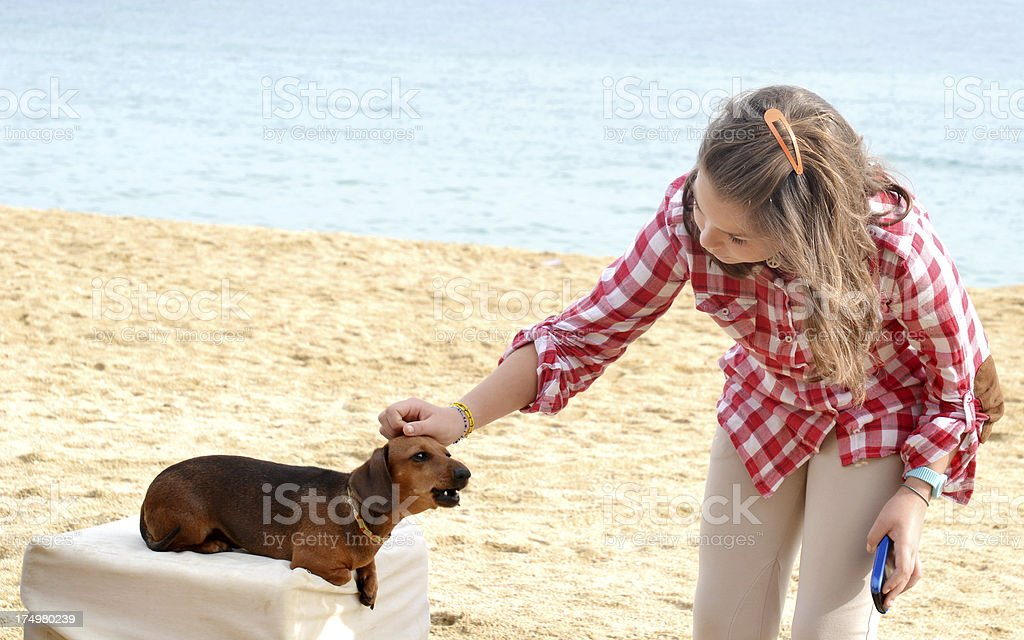Girl stroking little dog royalty-free stock photo