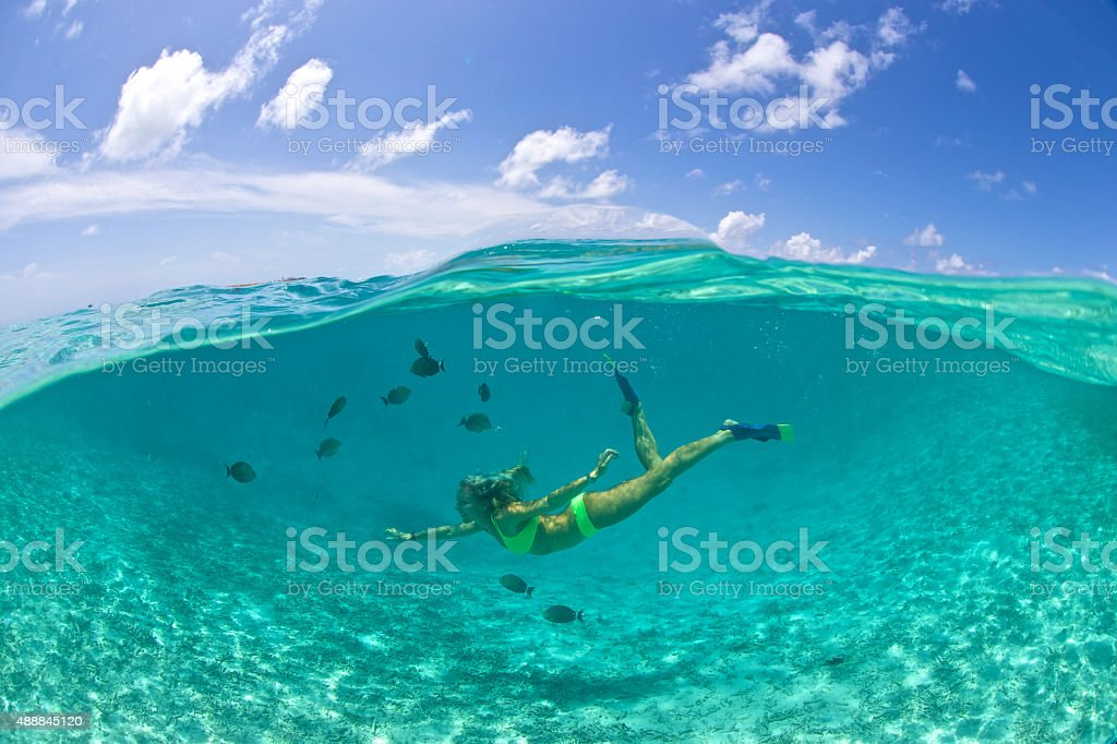 Girl swims with tropical fish in a clear lagoon stock photo