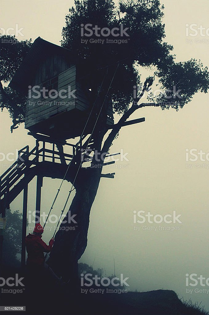 girl swinging in ecuador mountains in mist stock photo