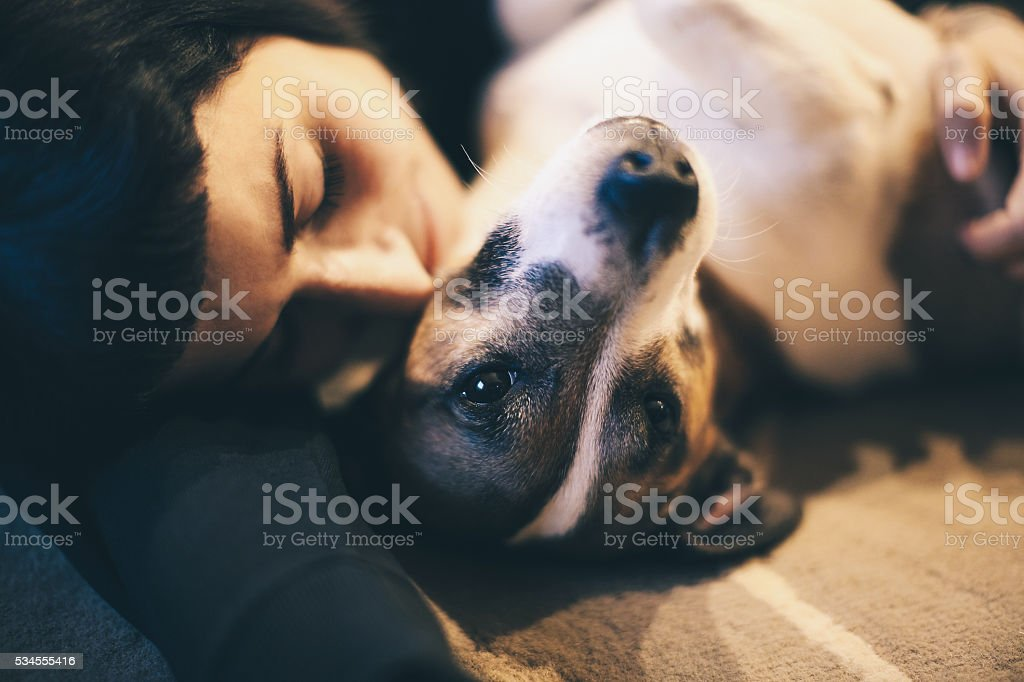 Girl take care of puppy stock photo