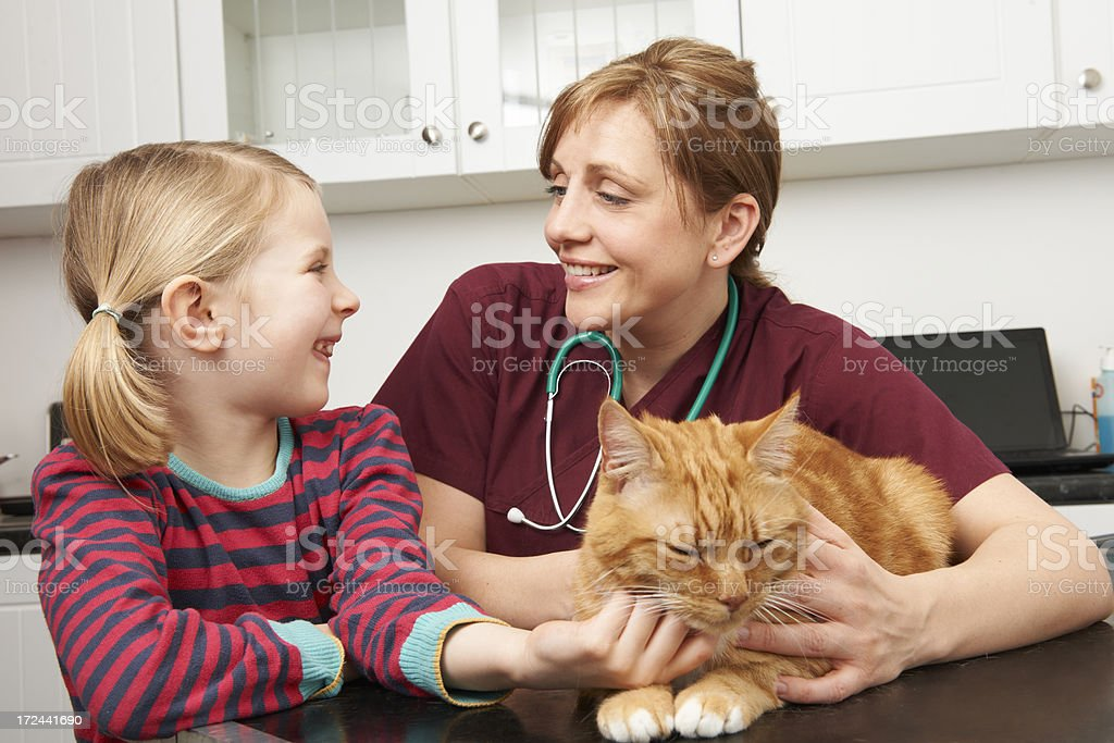 Girl Taking Pet Cat To Vet For Examination royalty-free stock photo