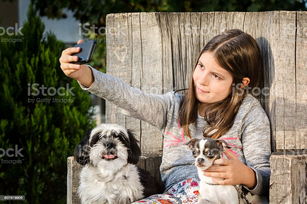 Girl taking selfie with her two dogs (Shih Tzu, Chihuahua) stock photo