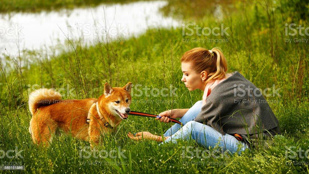 Girl talks to Shiba Inu. stock photo