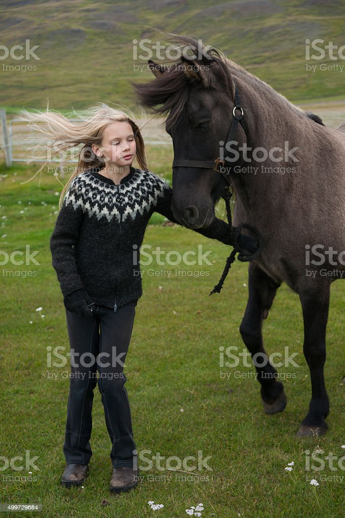 Girl tries to hold back  an Icelandic horse stock photo