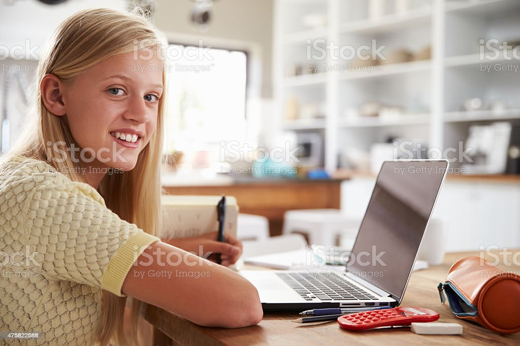 Girl using laptop computer at home stock photo