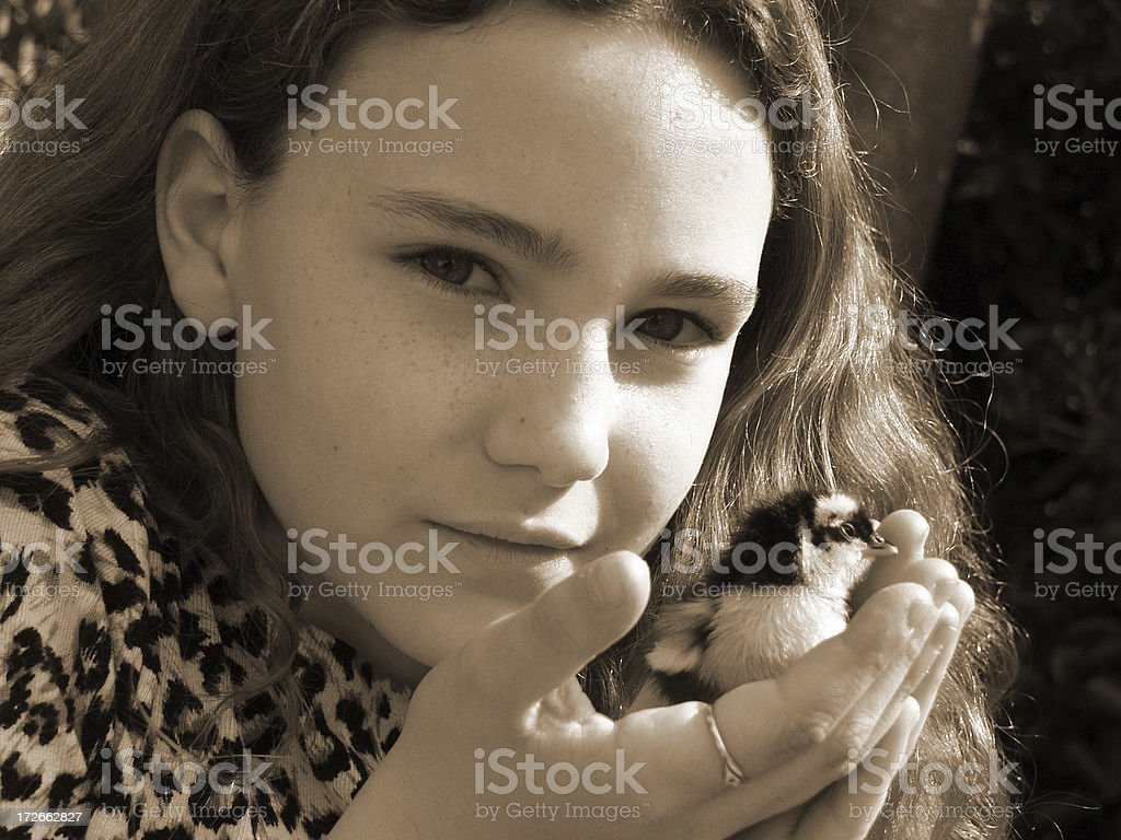 Girl w. Baby Chicken. royalty-free stock photo