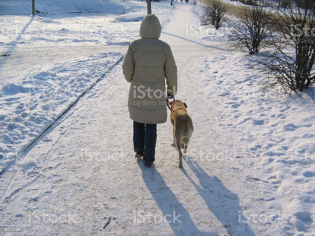 girl walks with a dog royalty-free stock photo