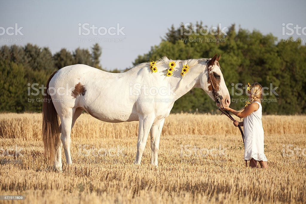 Girl Wearing Summer Dress and Sunflowers Petting Horse royalty-free stock photo