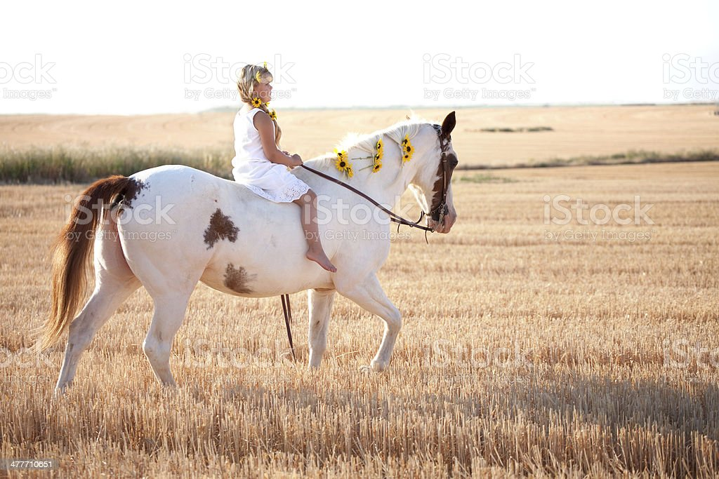 Girl Wearing Summer Dress and Sunflowers Riding Horse royalty-free stock photo