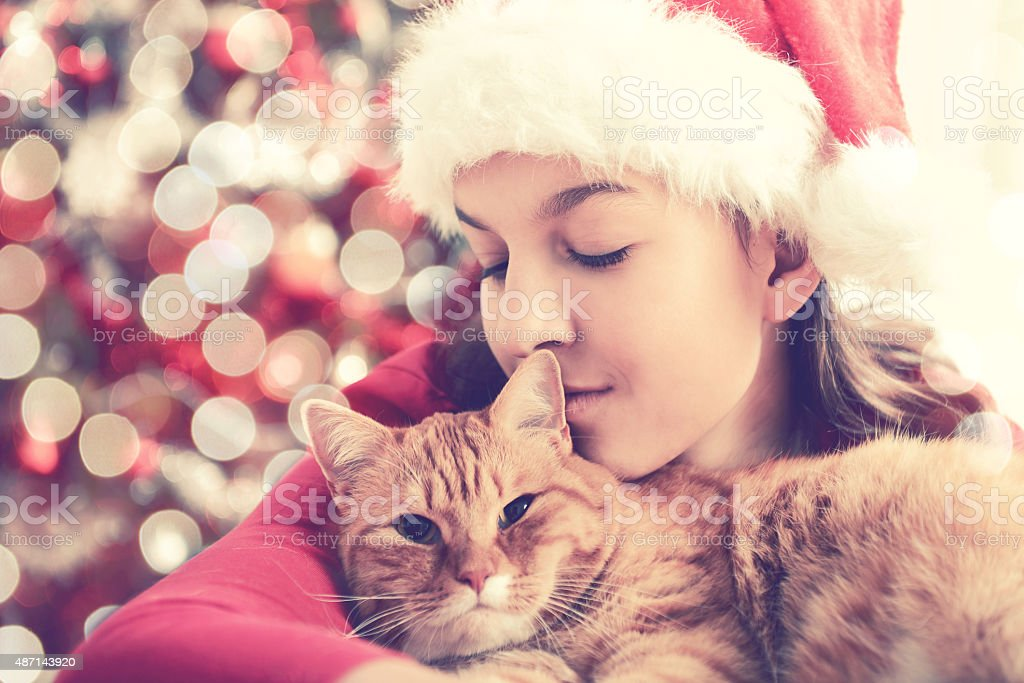 Girl with a cat in a Christmas interior stock photo