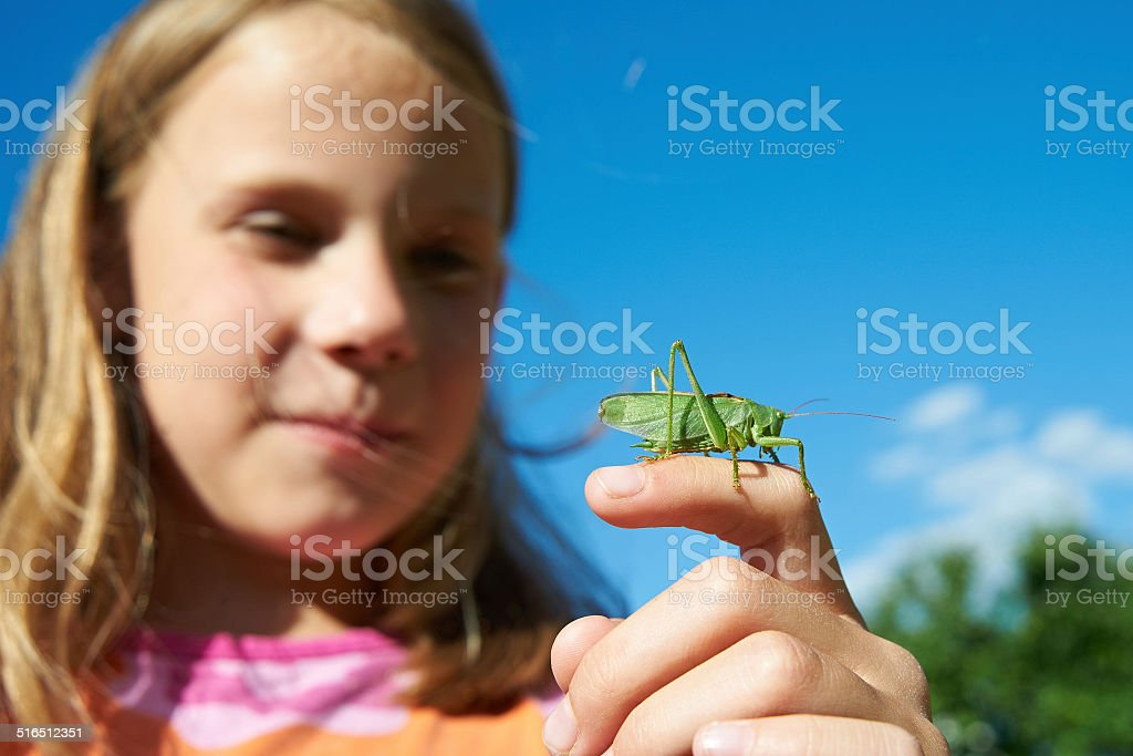 Girl with a grasshopper on a hand stock photo