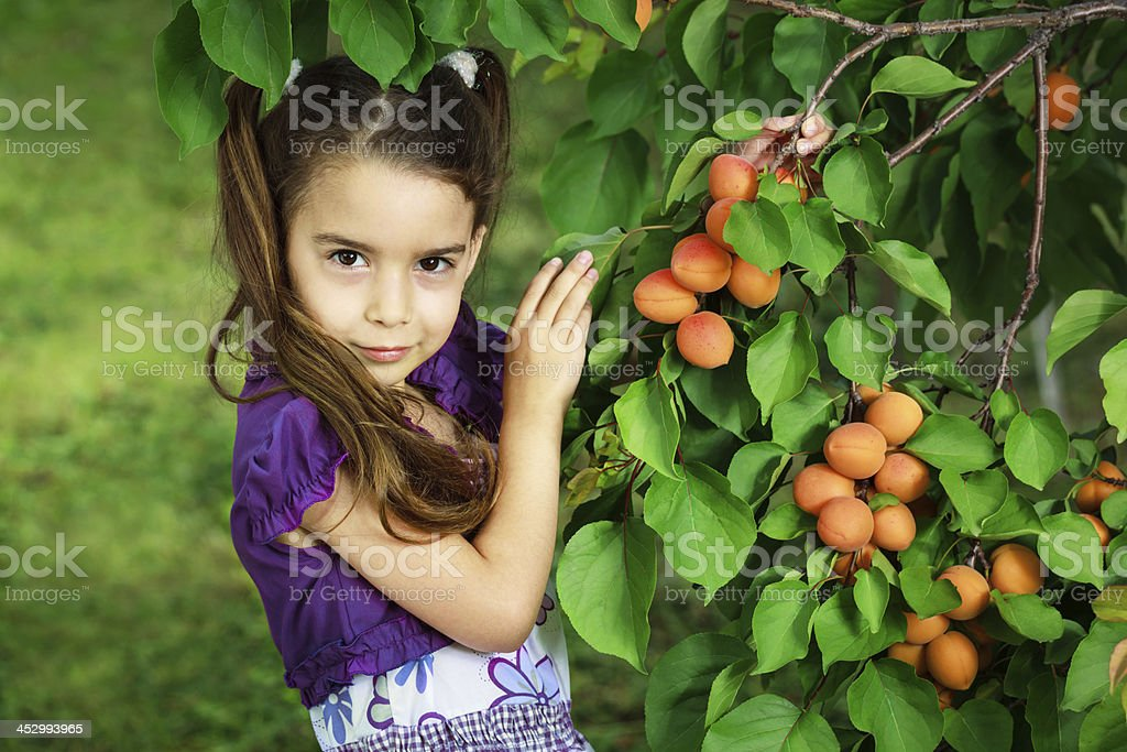 Girl with apricots stock photo