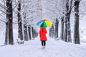Girl with colourful umbrella walking on the path