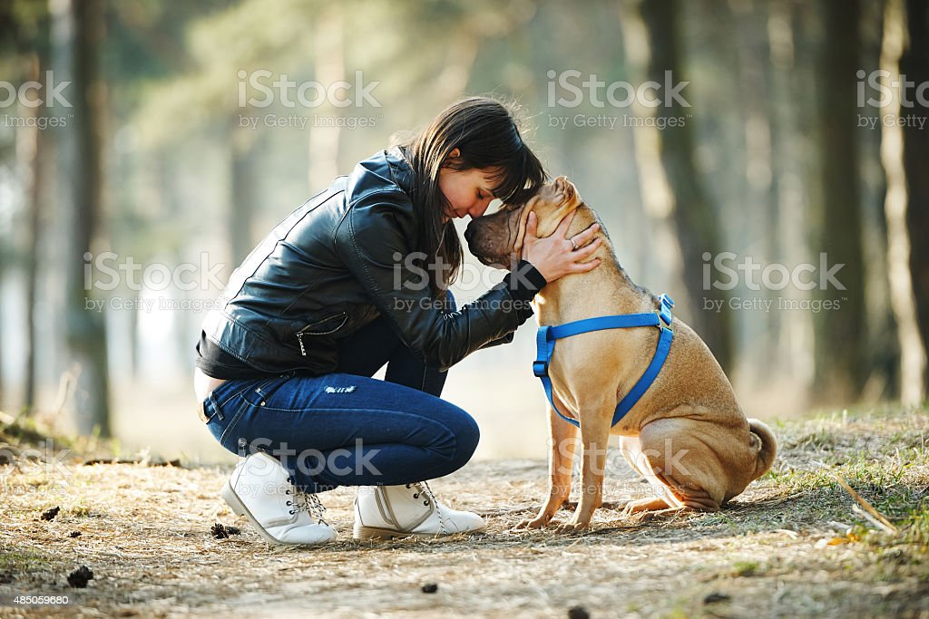girl with dog in the park stock photo