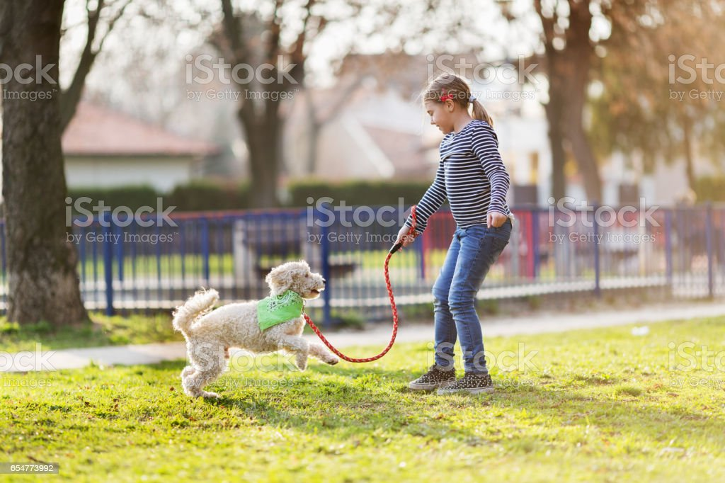 Girl with dog outside stock photo