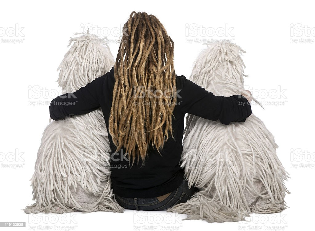 Girl with dreadlocks sitting between two White Corded standard Poodles. royalty-free stock photo