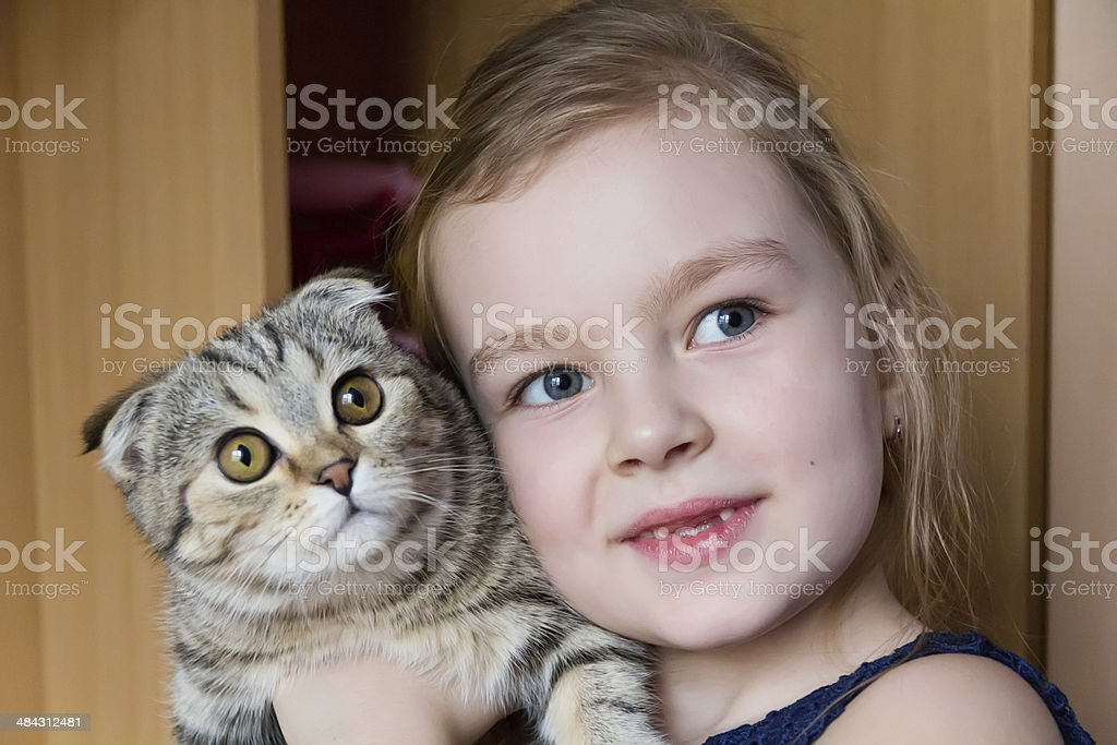 Girl with grey kitty stock photo