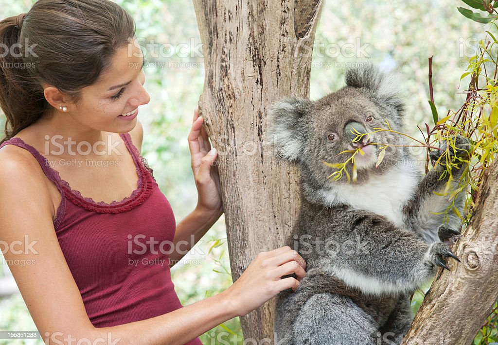 Girl with Koala in wildlife (XXXL) stock photo