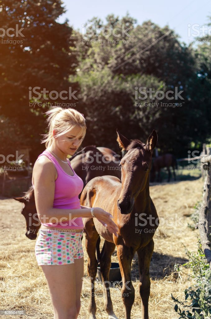 girl with new born horse stock photo