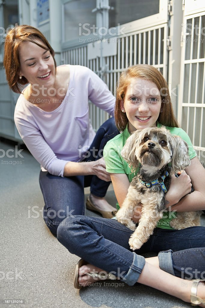 Girl with pet dog in clinic stock photo
