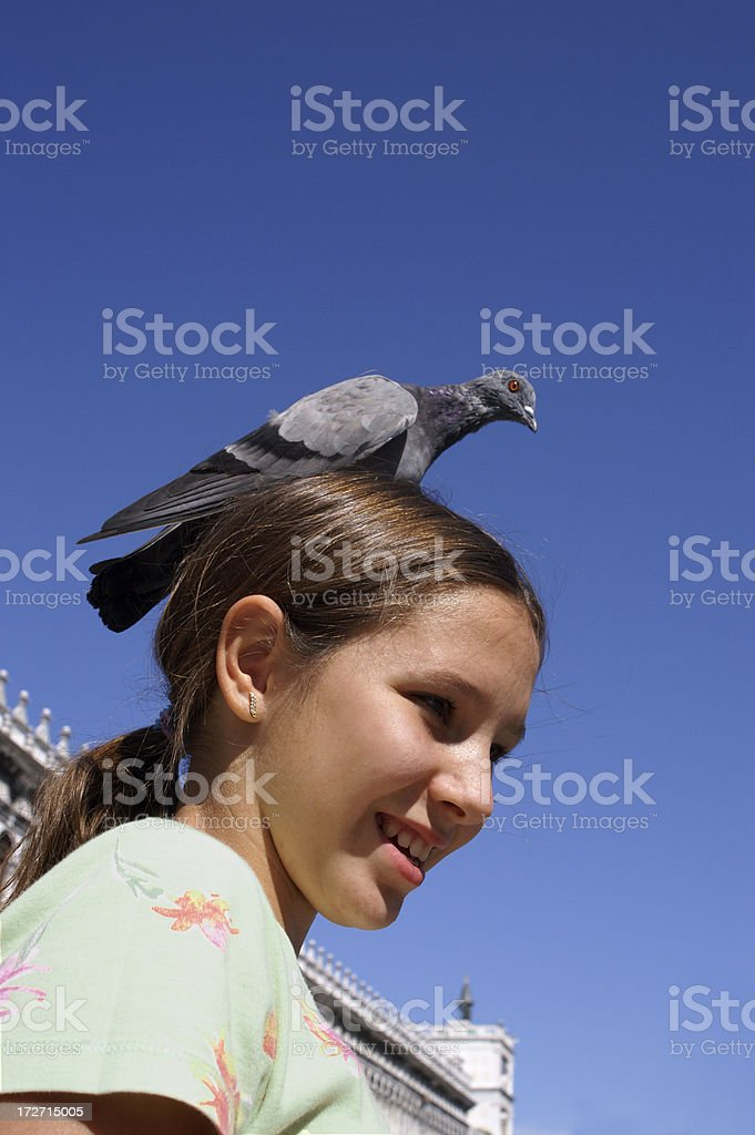 Girl with pigeon royalty-free stock photo