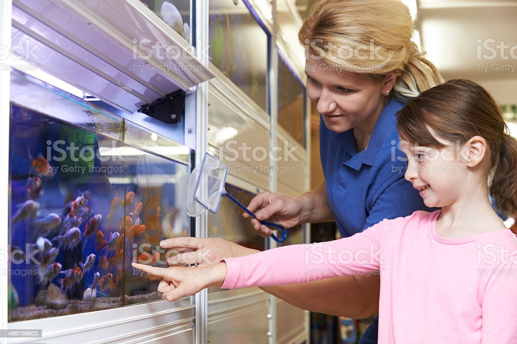 Girl With Sales Assistant Choosing Goldfish In Pet Store stock photo