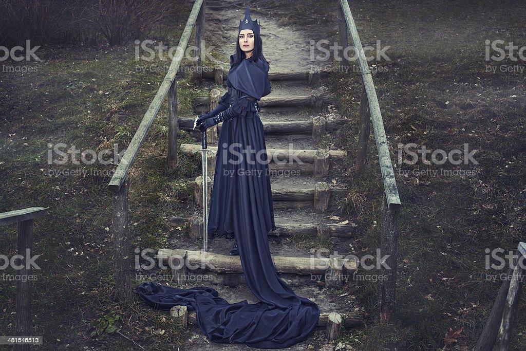 Girl with sword. stock photo