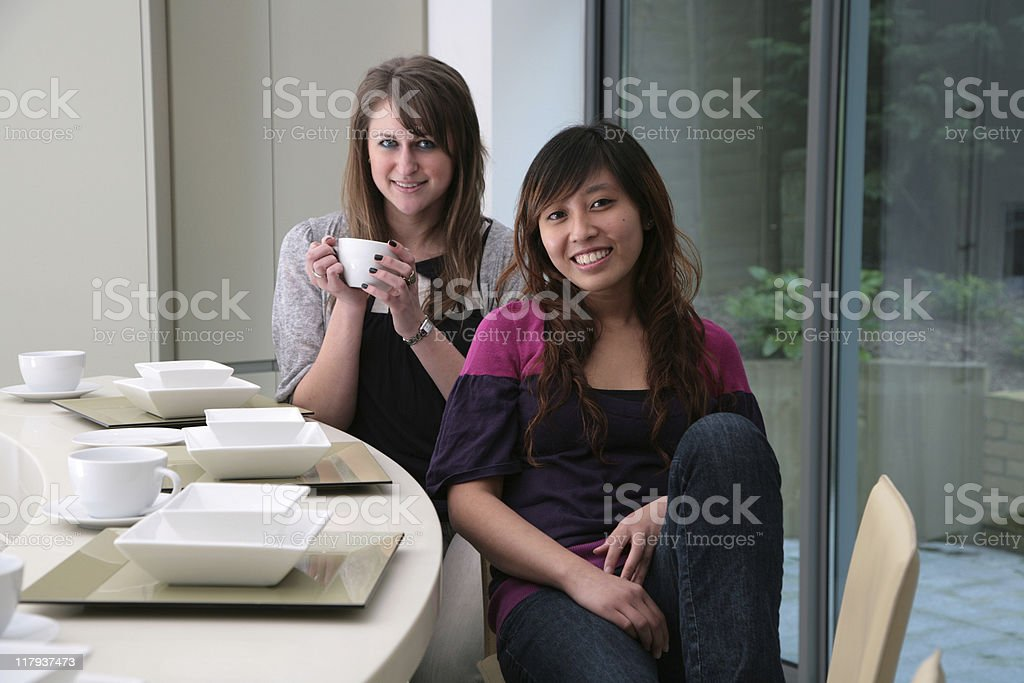 Girlfriends at Home royalty-free stock photo
