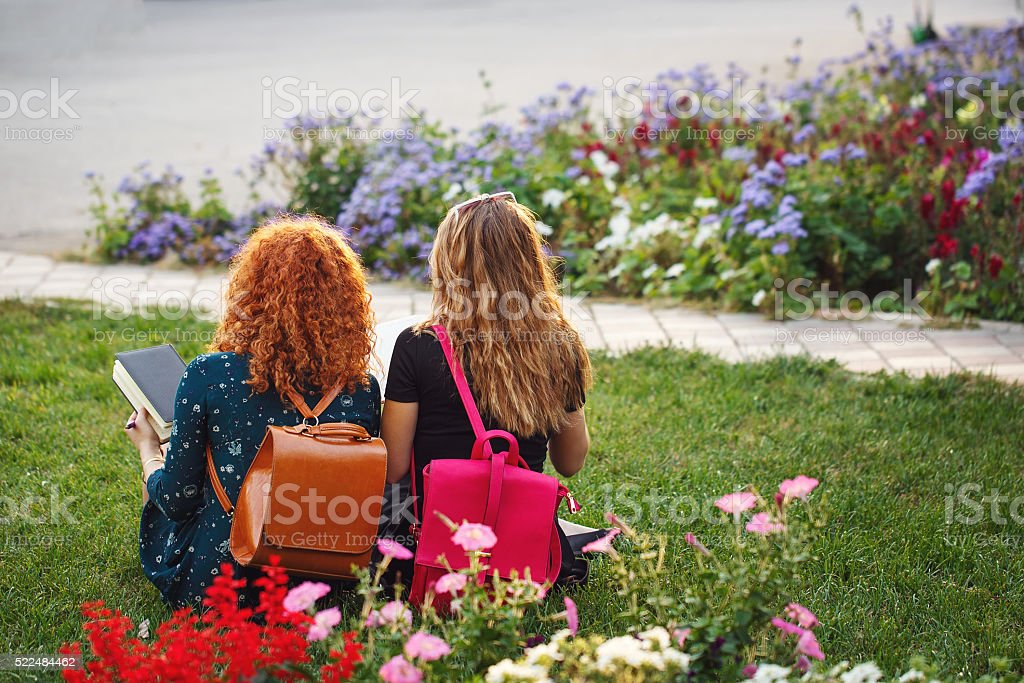 Girlfriends student in the park. stock photo