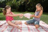 Girls fighting over doll