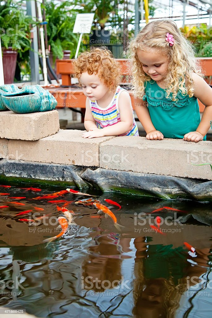 Girls Looking at Fish in Greenhouse Pond royalty-free stock photo